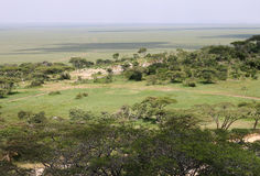 African savanna. A savanna in Tanzania is a grassland ecosystem characterized by the trees being sufficiently small or widely spaced so that the canopy does not Stock Photos