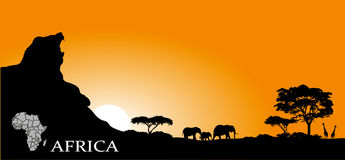 African savanna Stock Image