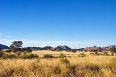 African savanna landscape Royalty Free Stock Photography