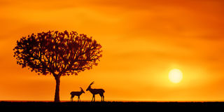 African savanna scenery. Vector orange evening savanna scenery with two antelopes (other landscapes are in my gallery Royalty Free Stock Photography