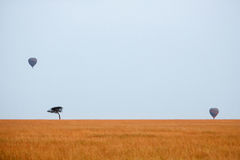 African savanna with tourists on a hot air balloon safari Stock Photography