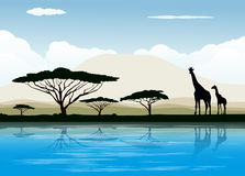African savanna. Vector illustartion background Stock Images