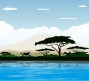 African savanna. Vector illustration background Royalty Free Stock Photo