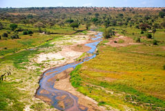 African savannah Stock Photography