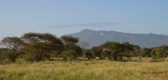 African savannah. Kenya outdoors landscape Royalty Free Stock Photography