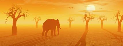 African savannah Royalty Free Stock Image