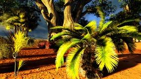 African savannah Stock Image