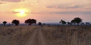 African Savannah. Sunset over the dry African Savannah, Mikumi, Tanzania Stock Photography