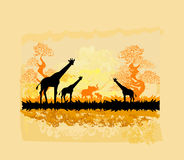 African savannah. Abstract background,  illustration Stock Images