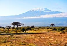 African savannah landscape Stock Image