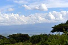 African savannah landscape Stock Photo