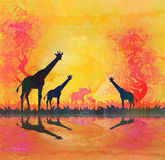 African savannah with reflection Royalty Free Stock Images
