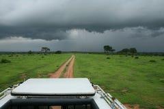 African savannah summer wild safari Tanzania Rwanda Botswana Kenya. African savannah summer pictrures wild safari Tanzania Rwanda Botswana Kenya Stock Photo