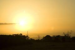 African Savannah Sunrise. The sun rises over the African Savannah at the Aberdare National Park in Kenya royalty free stock photo