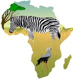 African savannah with zebra and secretary bird - vector. Illustration Royalty Free Stock Images