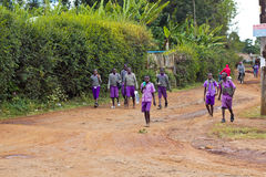 African school children. Group of children on their way home from school along a road near Moi's Bridge, Kenya royalty free stock images