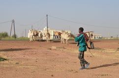 African shepherd Royalty Free Stock Photography