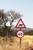African sign Stock Image
