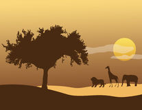 African sky. A tree, giraffe, elephant and lion silhouette with an African sunset in the background Stock Images