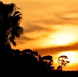 African Sky Stock Photography