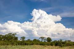 African Sky royalty free stock image