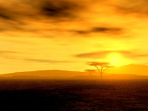 African Spirit - The Savannah. Illustration of an african sunset stock photography