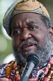 African Storyteller Stock Image