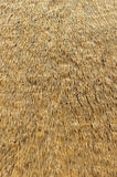 african straw roof Stock Photo