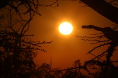 African sunrise royalty free stock photography