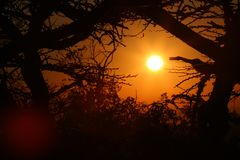 African sunrise Royalty Free Stock Photo