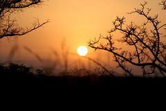 African Sunrise. Sun rising above the horizon over the mountains in South Africa Stock Image