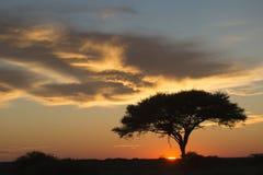 African sunrise Royalty Free Stock Image