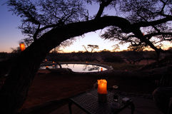 African Sunset. Beautiful african sunset , with swimming pool and acacia tree silhouette Stock Image