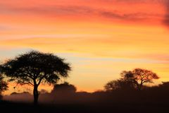 African Sunset - Background of color, beauty and harmony Royalty Free Stock Image