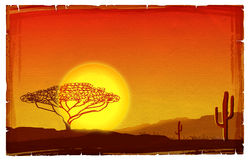 African sunset illustration Stock Images