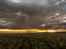 African sunset in the Masai Mara Stock Image