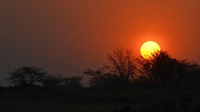 African sunset in matusadona royalty free stock images