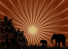 African Sunset. Mother and child elephant are walking into the forest during the sunset Royalty Free Stock Photos