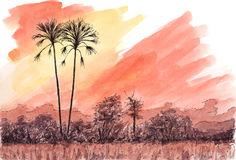 African sunset with palm trees. Ink and watercolor on rough paper Royalty Free Stock Images