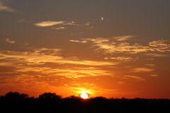 African Sunset, Sabi Sand Reserve. South Africa Royalty Free Stock Photography