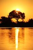 African sunset safari savannah Stock Photo