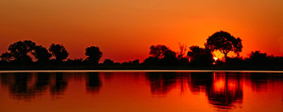 African sunset safari savannah Royalty Free Stock Photos