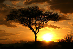 African Sunset. Tanzania, Africa royalty free stock images