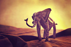 African Sunset. A toy elephant on a orange backlit background, simulating an african sunset Stock Photography
