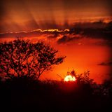 African Sunsets Royalty Free Stock Photography