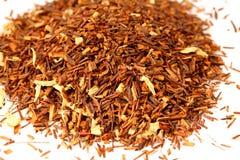 African tea. Aspalathus linearis Stock Photos