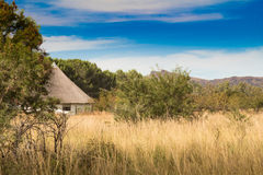 African thatched hut in the bush veld Stock Photography