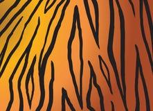 African Tiger skin PRINT. African Tiger PRINT. TIGER background. Black stripes on orange color background. Digital illustration. Vector file. Tiger pattern For stock illustration