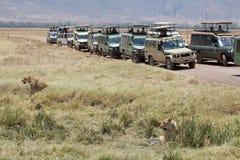 African tourism Stock Photos