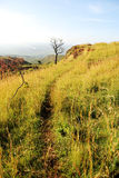 African Trail. A trail meanders along the edge of a cliff in Kapchorwa, Uganda, East Africa. This place looks over vast stretches of plains Royalty Free Stock Photos